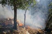 مهار آتش سوزی در مراتع ایذه