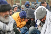 28 سارق و خرده فروش مواد مخدر در مه ولات دستگیر شدند