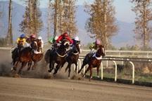 هفته پنجم مسابقات اسبدوانی کورس پاییزه گنبدکاووس برگزار شد