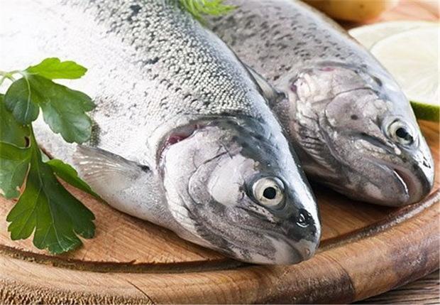 با ماهی به جنگ افسردگی بروید