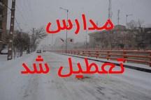 بارش برف برای دومین روز مدارس آذربایجان غربی را تعطیل کرد