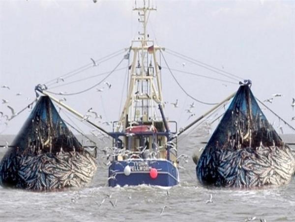 توقیف 2 کشتی ترال صید صنعتی در جاسک