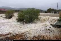 سیل 2160 میلیون ریال به بخش کشاورزی دلفان خسارت زد