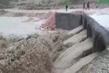 تداوم بارندگی  ،وضعیت یاسوج را بحرانی می کند