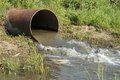 آبیاری محصولات زراعی جنوب پایتخت با آب سیاه ادامه دارد