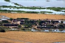 شرایط ویژه کشاورزان و دامدارن سیل زده خوزستان، در دریافت تسهیلات  خسارت ۸ هزار میلیارد تومانی سیلاب به بخش کشاورزی استان