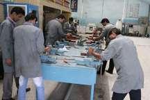 فنی و حرفه ای باید افراد متخصص بومی مورد نیاز ظرفیت های  سیستان و بلوچستان تربیت کند