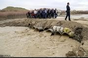پل های آسیب دیده روستاهای فومن مقاوم سازی شود