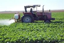 2.5 تن سم برای مزارع کلزا خراسان شمالی استفاده شد