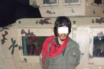 بازداشت یک عضو ارشد طالبان در کابل