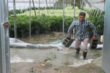 توفان 2 هزار و 200 میلیارد ریال به کشاورزی مازندران خسارت زد