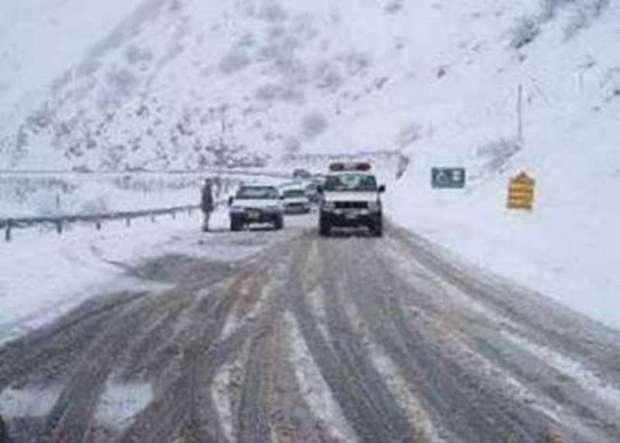 بارش برف سبب کندی تردد خودروها درجاده کرج - چالوس شد