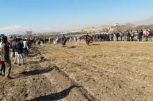 برگزاری مسابقات پاییزی اسب دوانی همدان در زمین های کشاورزی نهاوند