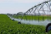 1100 هکتار از اراضی کشاورزی شمیرانات به آبیاری نوین مجهز شد