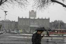 افزایش 84 درصدی بارندگی ها در تبریز