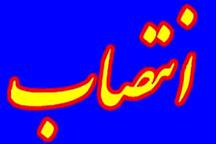 دلاور سرپرست مرکز بهداشت شهرستان لاهیجان شد