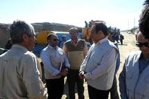 زلزله خراسان رضوی سه هزار قطعه مرغ و 116 راس دام را تلف کرد