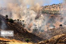 وقوع ۱۷۵ مورد آتشسوزی در مراتع و جنگلهای خوزستان