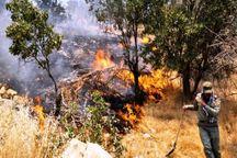 احتمال آتش سوزی در مراتع البرز  استقرار موج گرما تا سه روز آینده