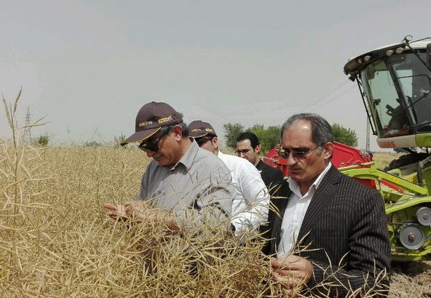 برای موفقیت در کشاورزی باید برای آموزش هزینه کرد