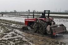 حرکت شتابان مازندران در مسیر کشاورزی ارگانیک