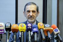 ولایتی: بازرسان سازمان ملل در سوریه هنوز بررسی خود را آغاز نکرده اند