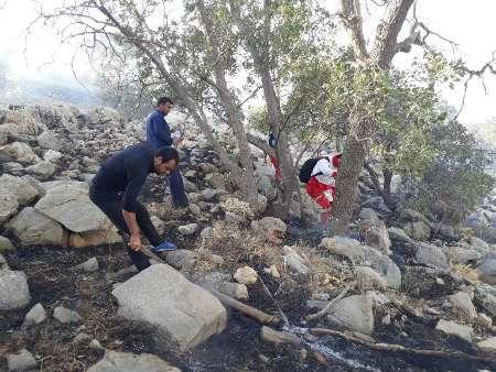 دومین آتش سوزی کوه دلا در اندیکا مهار شد