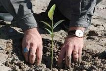 استقبال از هفته درختکاری با نواختن زنگ طبیعت در مدارس مازندران