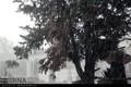 بارش شدید باران در راه ایلام است