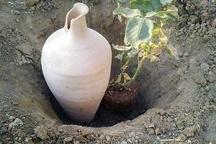 اجرای آبیاری کوزه ای در یک واحد باغی در شیرکوه