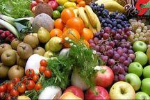 1987 میلیارد ریال برای خودکفایی محصولات کشاورزی چهارمحال و بختیاری هزینه شد