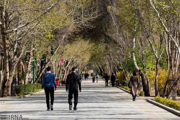 مسیر ویژه خودروی برقی و دوچرخه در چهارباغ اصفهان ایجاد می شود