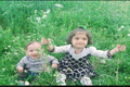 کشته شدن اعضای یک خانواده پنج نفره در محور یاسوج- سمیرم