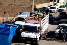 کامیون حامل دام قاچاق در جیرفت توقیف شد