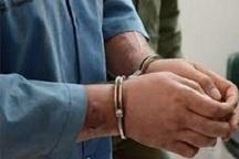 سارق سیم برق در دشتی دستگیر شد