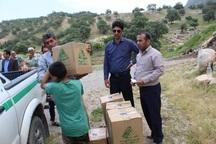 بسته های حمایتی بین روستاهای آسیب دیده از سیل باشت توزیع شد