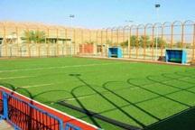 افتتاح چند طرح با حضور معاون وزیر ورزش در یزد