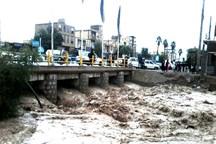 تشریح وضعیت جنوب کرمان در روزهای بارانی ابتدای سال