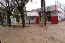 50 نقطه شهر بیجار دچار آب گرفتگی شد
