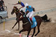 مسابقات اسب دوانی کورس بهاره کشور در یزد آغاز شد