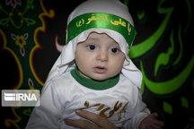 مراسم شیرخوارگان حسینی در ۳۵۰ نقطه استان اصفهان برگزار شد