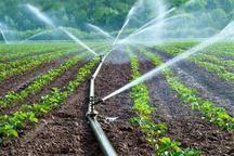 تجهیز 166 هکتار از مزارع کشاورزی شهرستان البرز به سامانه نوین آبیاری