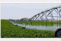 کاهش 20 درصدی بارندگی و افزایش بهرهوری آب کشاورزی درچهارمحال و بختیاری