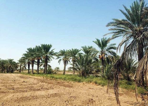 دلگان و بزمان خشکترین شهرهای کشور شدند