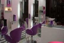 300 آرایشگاه زنانه در شهرستان فردیس پروانه کسب دارند