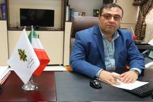 بانک کشاورزی 824 میلیارد ریال به گندمکاران زنجانی پرداخت کرد