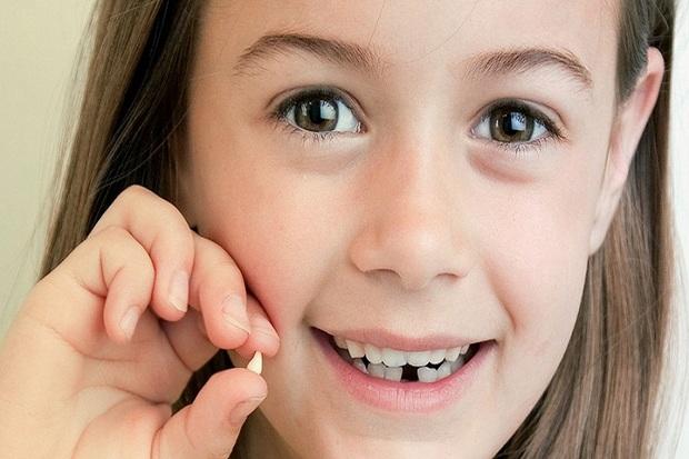 دندان های شیری فرزندان خود را به پژوهشکده رویان هدیه دهید