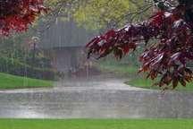 کارشناس هواشناسی: بارش متناوب باران در روز طبیعت در قم از نشستن نزدیک رودخانه ها خودداری شود