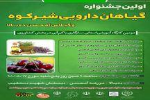 جشنواره گیاهان دارویی شیرکوه و گیلاس دهبالا برگزار میشود