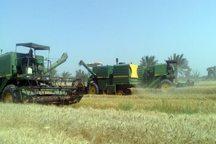 450میلیارد ریال برای تامین ادوات کشاورزی اردبیل اختصاص یافت